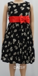 Girls Dresses GD45